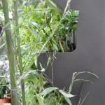 Gli scaffali permettono di realizzare una coltura verticale, come la coltura a terrazzamenti