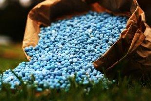 Bio - fertilizzante