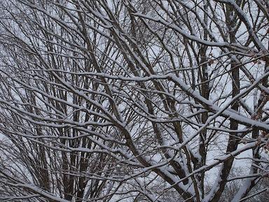 Aiuto nevica!