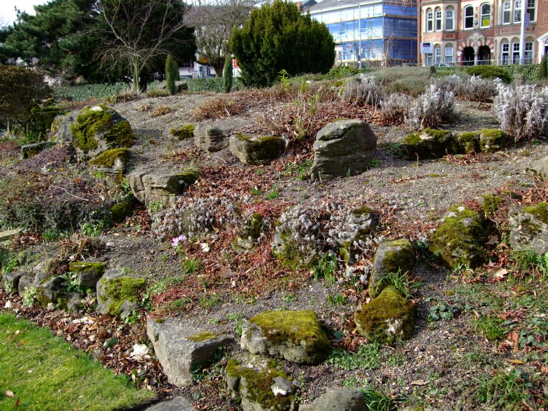Come realizzare un giardino roccioso giardinaggio piante for Giardino roccioso piante