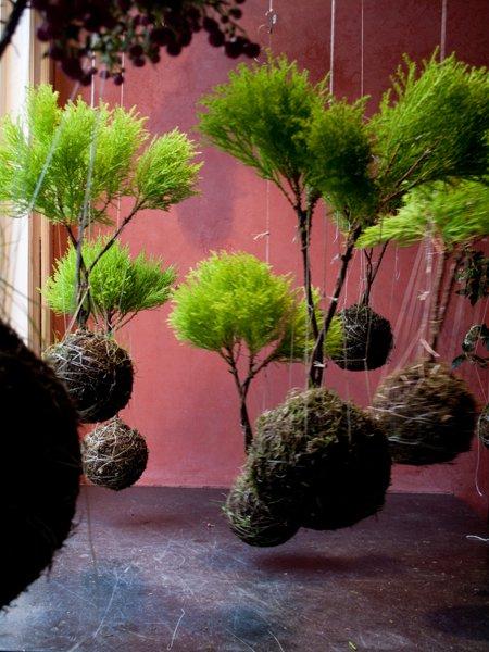 Famoso Cascate di fiori: la soluzione dei vasi sospesi - Giardinaggio  EU23