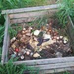 compostiera faidate
