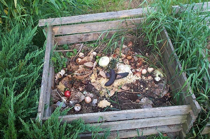come fare il compostaggio ed una compostiera fai da te ... - Come Creare Un Giardino Fai Da Te