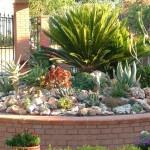 Esempio di realizzazione di giardino roccioso