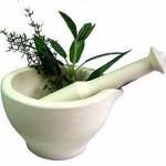 piante officinali in Fitoterapia