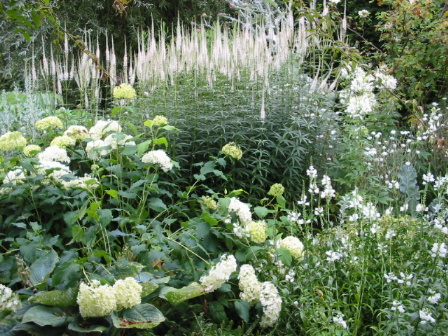 Fiori Bianchi Giardino.Realizzare Un Giardino Romantico Il Giardino Bianco