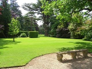 Progettare il proprio giardino fasi preliminari alla