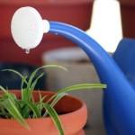Irrigare a seconda delle condizioni ambientali