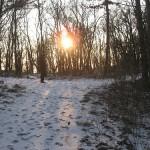 La neve protegge il terreno