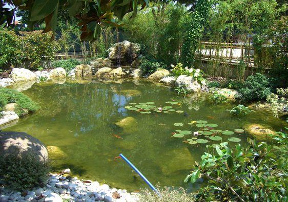 Laghetti fontane cascate elementi idrici per il for Laghetti nei giardini