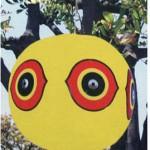 Palloni anti uccelli