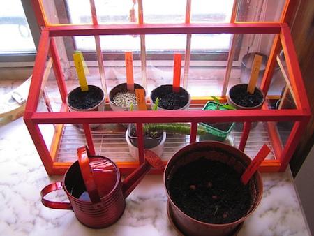 Curare le piante in casa e sul balcone nel mese di ottobre for Mini serra da balcone