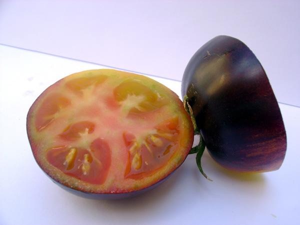 Pomodoro Sun Black
