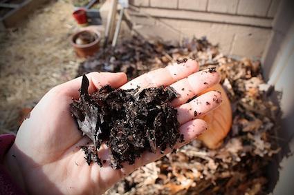 Realizzate il compost con le foglie