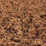 condizioni del suolo