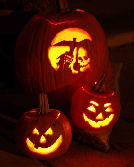 Pianta Di Zucca Di Halloween.La Zucca Proprieta Coltivazione E Curiosita Giardinaggio Piante E