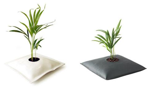 Piante Da Appartamento Senza Terra.Idrocoltura Coltivare Le Proprie Piante Senza L Ausilio Della