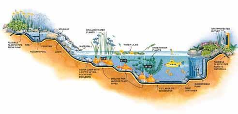 Come progettare e costruire un laghetto nel giardino for Immagini di laghetti artificiali