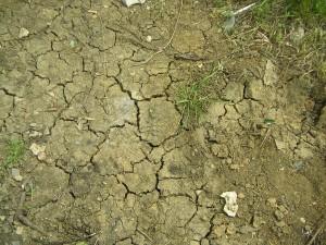 caratteristiche del terreno