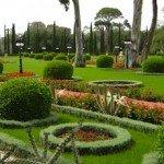 Progettare il giardino