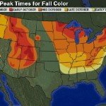 Mappa del fall foliage in America
