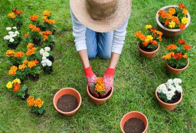 Salvaguardiamo le piante