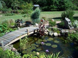 Laghetto in giardino con passerella in legno